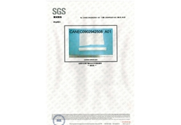 Test report SGS6
